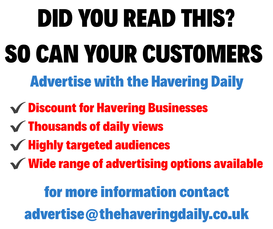 thehaveringdaily.co.uk